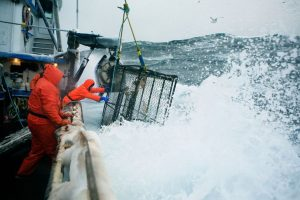 The Riskiest Professions In The World